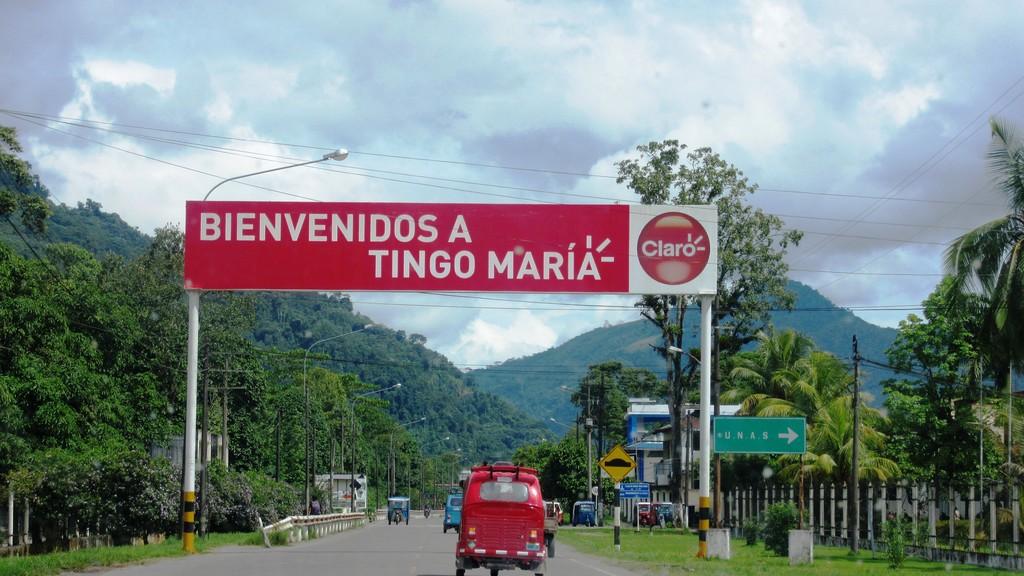 https://feriavirtual.munitingomaria.gob.pe/wp-content/uploads/2017/08/como-llegar-a-tingo-maria.jpg
